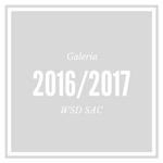 galeria-5